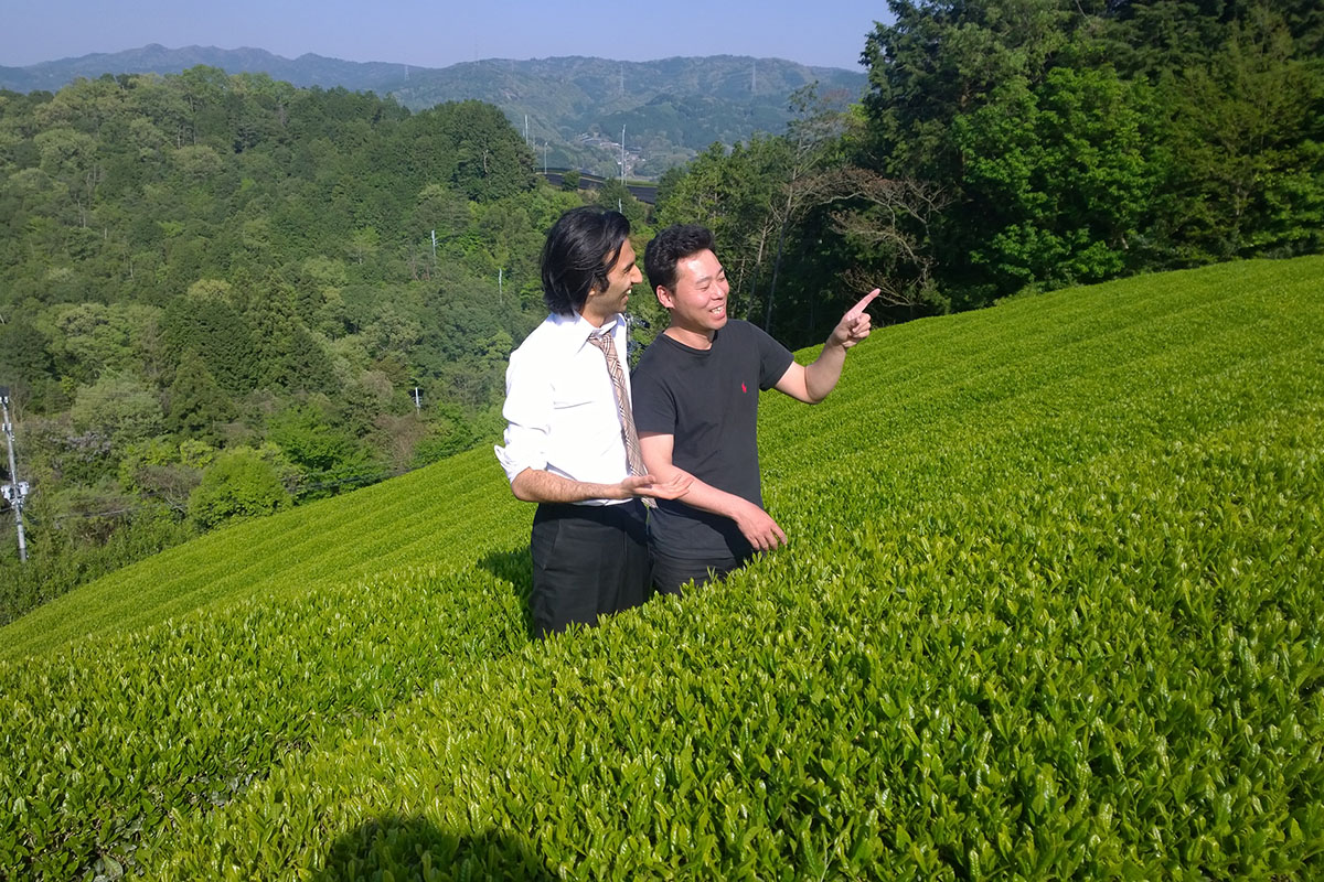 Lalani & Co: Jameel Lalani at Kyoto tea garden